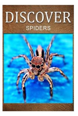 Spiders - Discover: Early Reader's Wildlife Photography Book