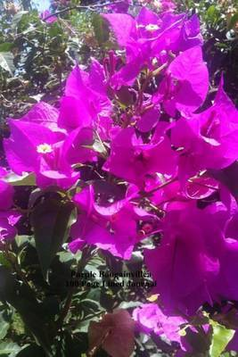 Purple Bougainvillea 100 Page Lined Journal: Blank 100 Page Lined Journal for Your Thoughts, Ideas, and Inspiration