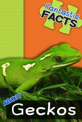 Fantastic Facts about Geckos: Illustrated Fun Learning for Kids