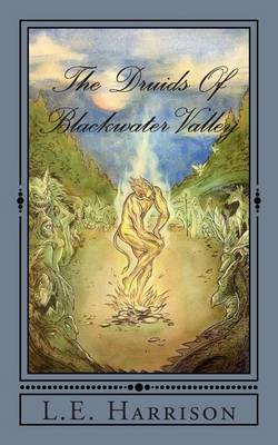 The Druids of Blackwater Valley: Book One: Blackbird
