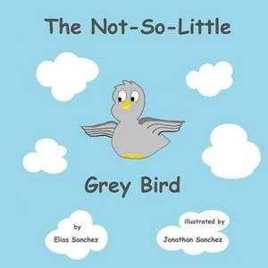 The Not-So-Little Grey Bird