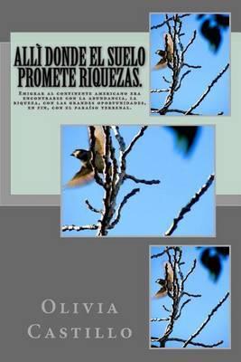 Alli Donde El Suelo Promete Riquezas.: Emigrar Al Continente Americano Era Encontrarse Con La Abundancia...