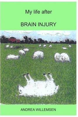 My Life After Brain Injury