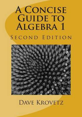 A Concise Guide to Algebra 1