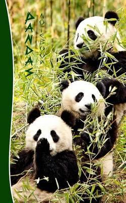 Pandas Notebook: Gifts / Presents ( Chinese Giant Panda Bears Ruled Notebook )
