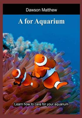 A for Aquarium: Learn How to Care for Your Aquarium
