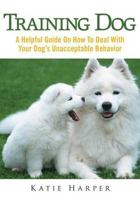 Training Dog: Know Why Confidence Is the Main Ingredient in Life