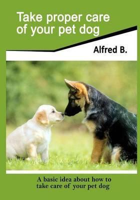 Take Proper Care of Your Pet Dog: A Basic Idea about How to Take Care of Your Pet Dog