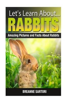 Rabbits: Amazing Pictures and Facts about Rabbits