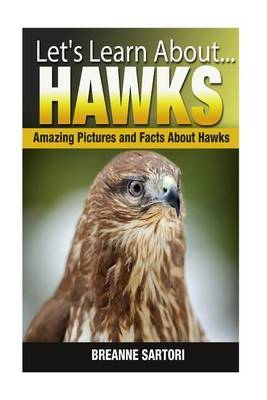 Hawks: Amazing Pictures and Facts about Hawks