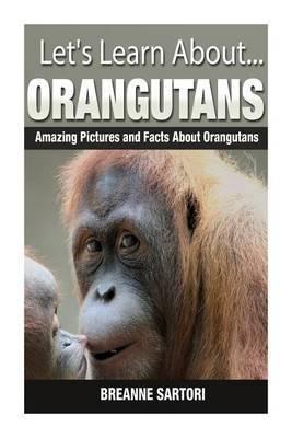 Orangutans: Amazing Pictures and Facts about Orangutans