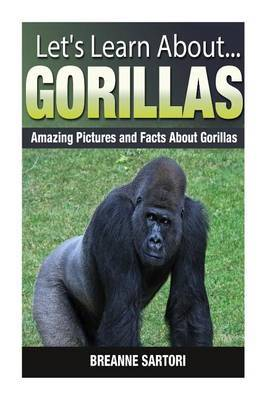 Gorillas: Amazing Pictures and Facts about Gorillas