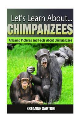 Chimpanzees: Amazing Pictures and Facts about Chimpanzees