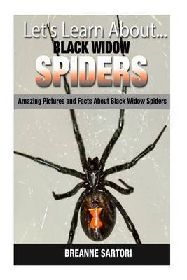 Black Widow Spiders: Amazing Pictures and Facts about Black Widow Spiders