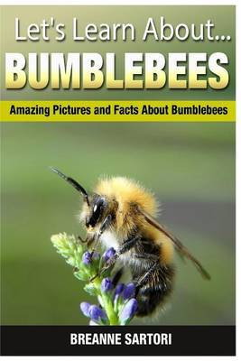 Bumblebees: Amazing Pictures and Facts about Bumblebees