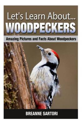 Woodpeckers: Amazing Pictures and Facts about Woodpeckers