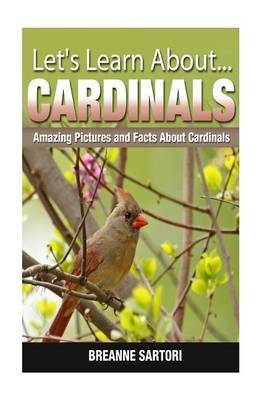 Cardinals: Amazing Pictures and Facts about Cardinals