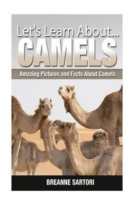 Camels: Amazing Pictures and Facts about Camels