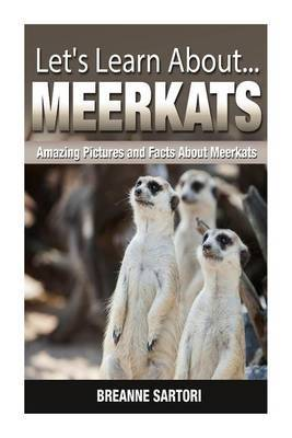 Meerkats: Amazing Pictures and Facts about Meerkats