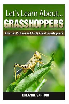 Grasshoppers: Amazing Pictures and Facts about Grasshoppers