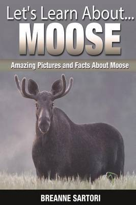 Moose: Amazing Pictures and Facts about Moose