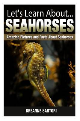 Seahorses: Amazing Pictures and Facts about Seahorses