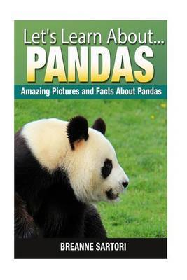 Pandas: Amazing Pictures and Facts about Pandas