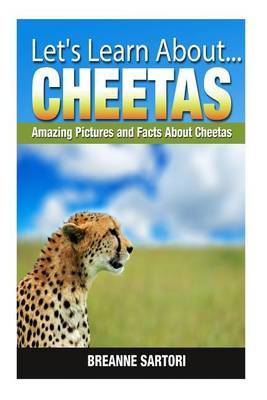 Cheetahs: Amazing Pictures and Facts about Cheetahs