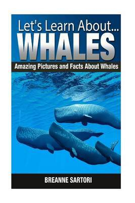 Whales: Amazing Pictures and Facts about Whales