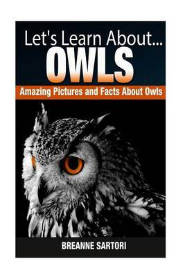 Owls: Amazing Pictures and Facts about Owls