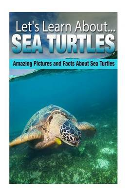 Sea Turtles: Amazing Pictures and Facts about Sea Turtles