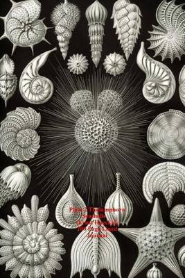 Plate 2 Thalamphora Seashells (Ernst Haeckel) 200 Page Lined Journal: (Artforms of Nature 1904) Blank 100 Page Lined Journal for Your Thoughts, Ideas, and Inspiration