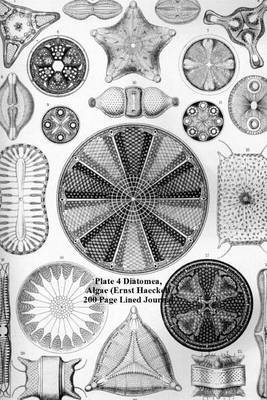 Plate 4 Diatomea, Algae (Ernst Haeckel) 200 Page Lined Journal: (Artforms of Nature 1904) Blank 100 Page Lined Journal for Your Thoughts, Ideas, and Inspiration