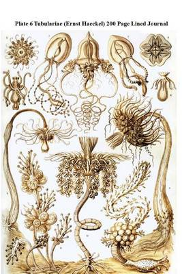 Plate 6 Tubulariae (Ernst Haeckel) 200 Page Lined Journal: (Artforms of Nature 1904) Blank 100 Page Lined Journal for Your Thoughts, Ideas, and Inspiration