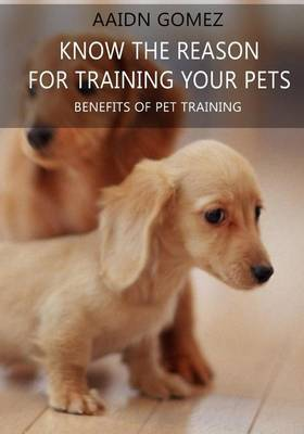 Know the Reason for Training Your Pets: Benefits of Pet Training