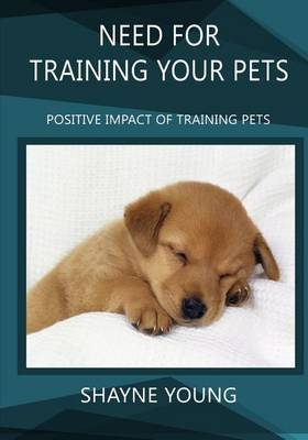 Need for Training Your Pets: Positive Impact of Training Pets