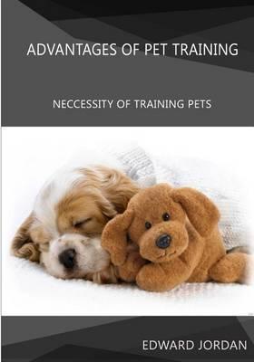 Advantages of Pet Training: Neccessity of Training Pets