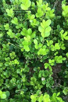 Boxwood Shrub 100 Page Lined Journal: Blank 100 Page Lined Journal for Your Thoughts, Ideas, and Inspiration