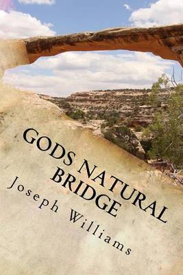 Gods Natural Bridge: Allowing God to Work Through You, to Reconnect with Your Family