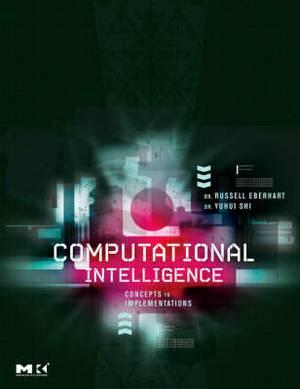 Computational Intelligence Theory and Implementation