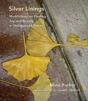 Silver Linings: Meditations on Finding Joy and Beauty in Unexpected Places