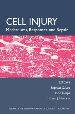 Cell Injury: Mechanisms, Responses, and Therapeutics