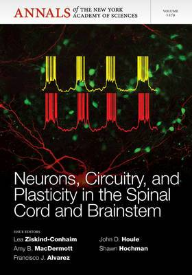 Neurons, Circuitry, and Plasticity in the Spinal Cord and Brainstem