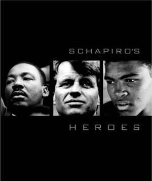 Schapiro's Heroes