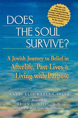 Does the Soul Survive?: A Jewish Journey to Belief in the Afterlife Past Lives and Living with Purpose