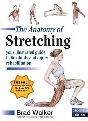 Anatomy Of Stretching Second Edition The: Your Anatomical Guide To Flexibility And Injury Rehabili