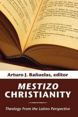 Mestizo Christianity: Theology from the Latino Perspective