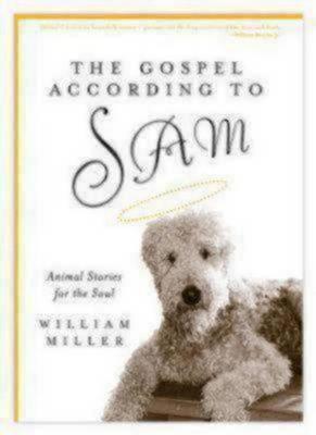 Gospel According to Sam