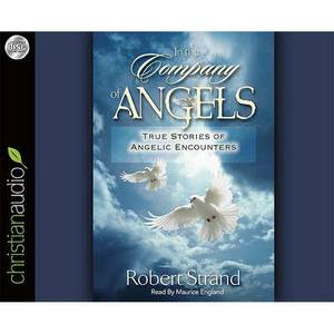 In the Company of Angels: True Stories of Angelic Encounters