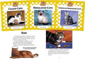 Cats Set 4: Checkerboard Animal Library Anniversary Edition